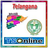 ts online